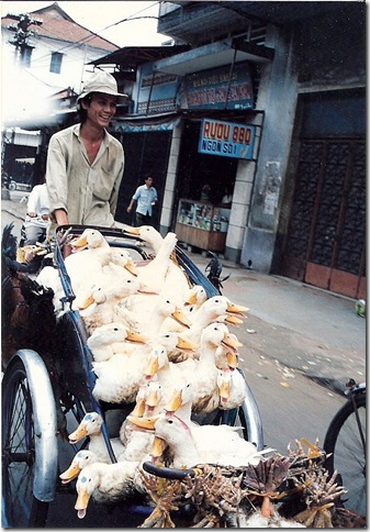 Having a gander, Saigon, 1993.