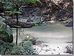 clean looking river