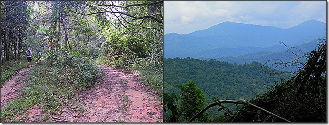 Turn right for Bukit Kutu, left for Lata Medang