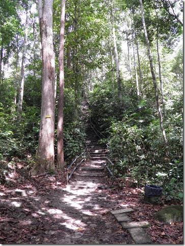 The path to the waterfall is well maintained.