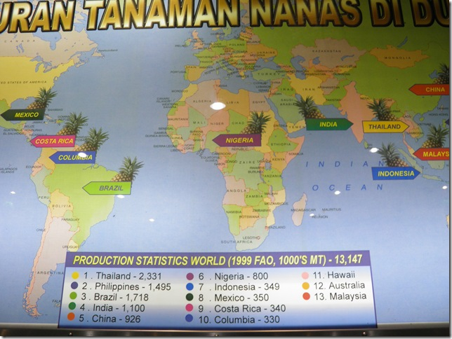 Pineapple Production Statistics