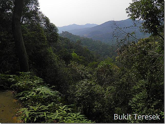 View from Bukit Teresek