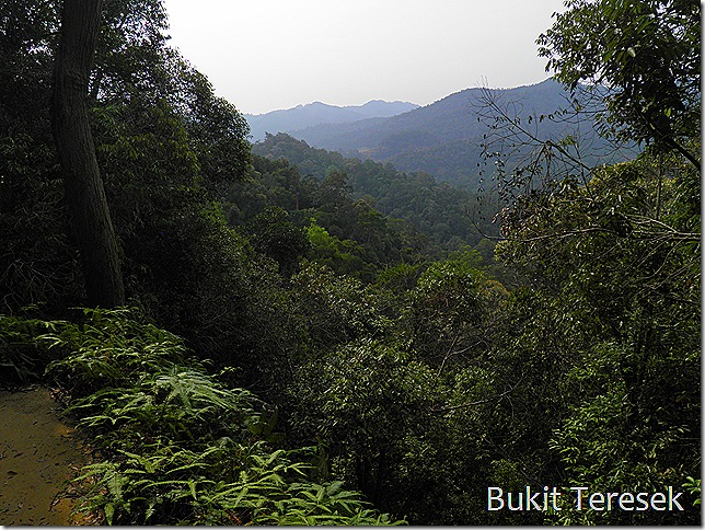 View from Bukit Teresek