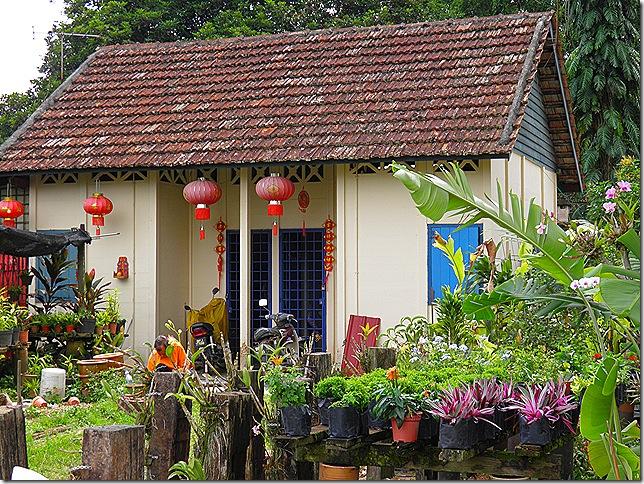Residents' cottages at Sungai Buloh