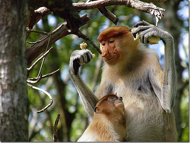 Loving mother and child