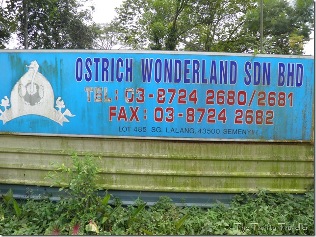 Ostrich Wonderland Address