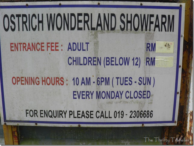 Ostrich Wonderland Opening Hours and Contact