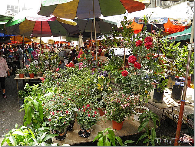 Pot Plant vendor at Pudu Market