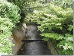 Summer foliage in Arima Onsen