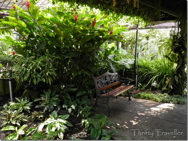 Shady bench at The Secret Garden of 1 Utama