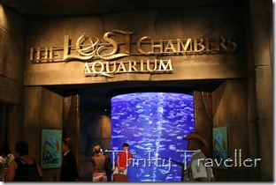 The Lost Chambers Aquarium, Atlantis, Dubai