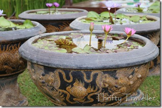 Water lilies at Floria 2014