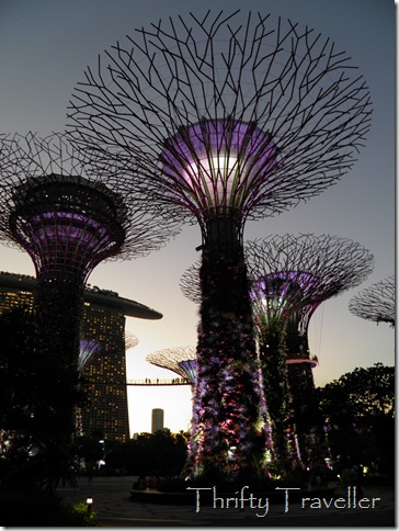 Supertree Grove, Singapore