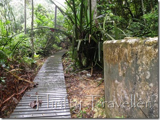 Boardwalk to Pulau Masjid, Cape Rachado