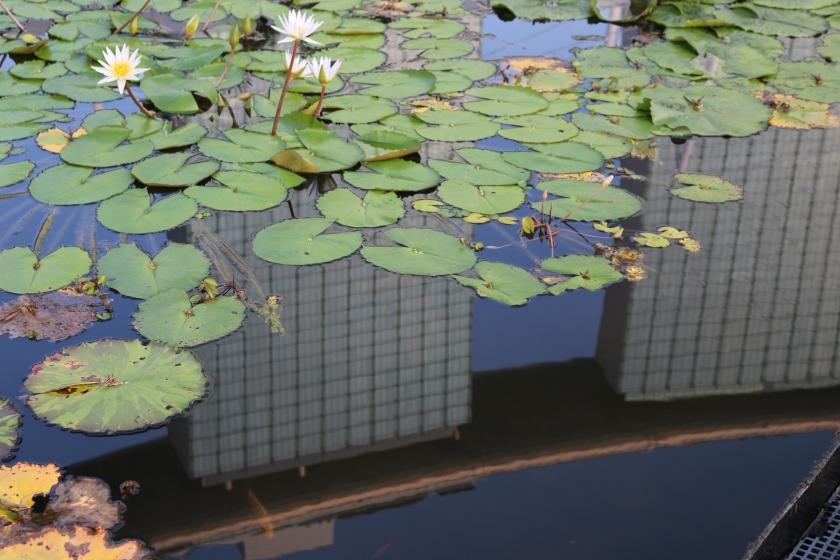 Reflection of Marina Bay Sands