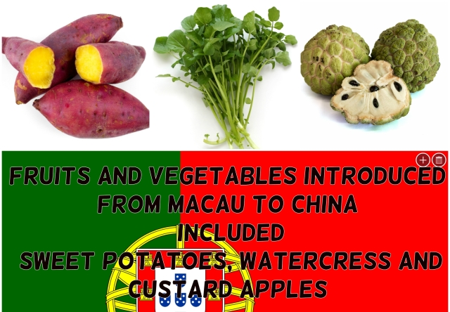 Fruit and vegetables introduced from Macau to China