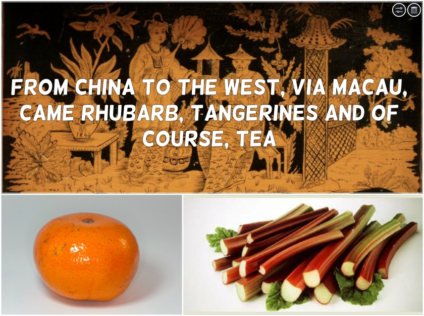 Mandarins and Rhubarb were introduced to the West from China via Macau