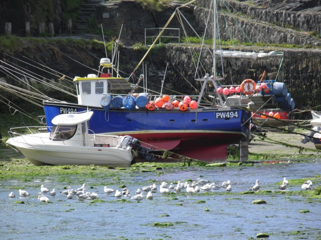 Typical Cornwall scene in Boscastle