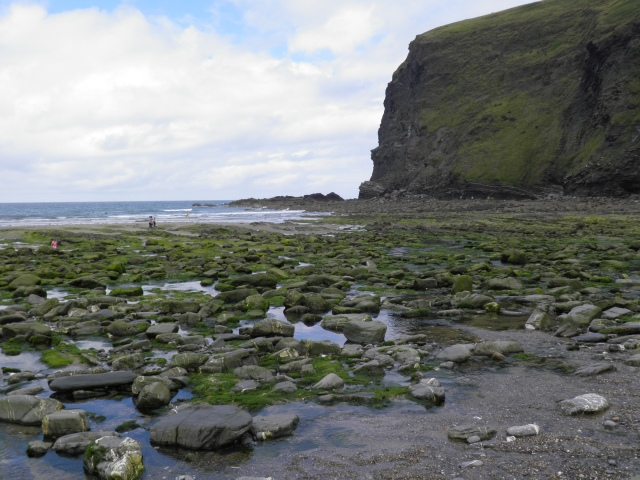 Crackington Haven has a relatively sheltered shingle and sand beach and is popular with surfers.