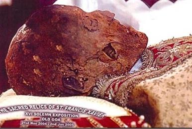 Francis-Xavier-Skull