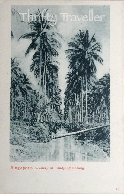 Tandjong Katong Vintage Postcard