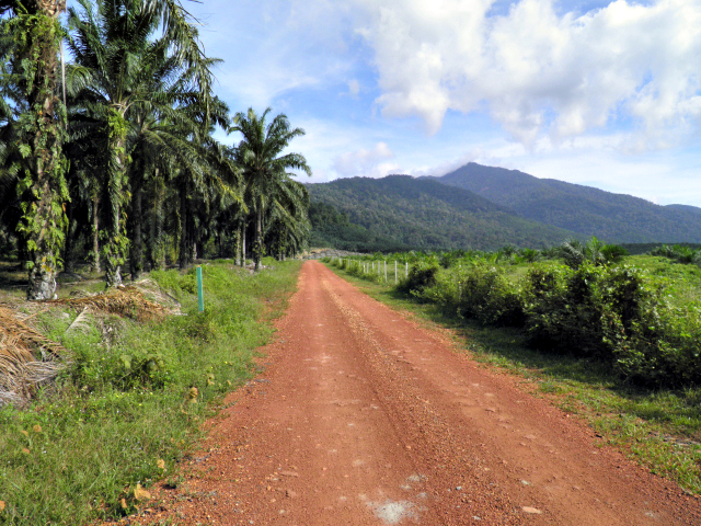 Road to Gunung Ledang