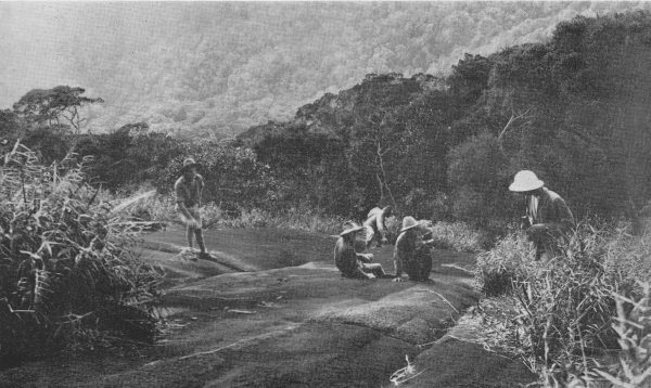 Photo taken on Mt. Ophir in 1934.