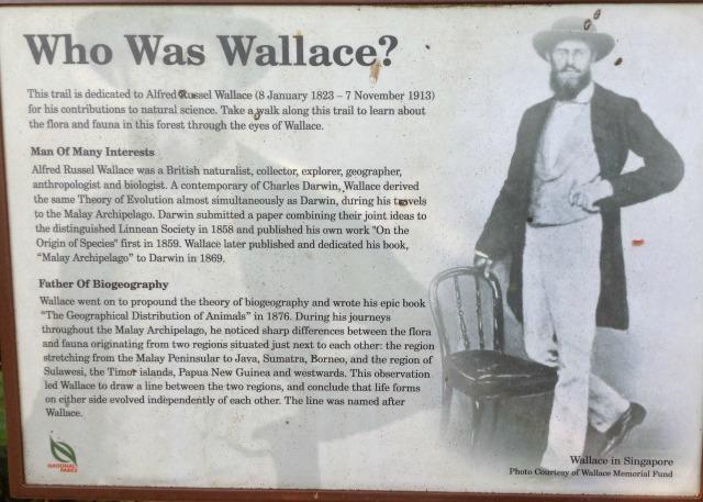 WhoWasWallace