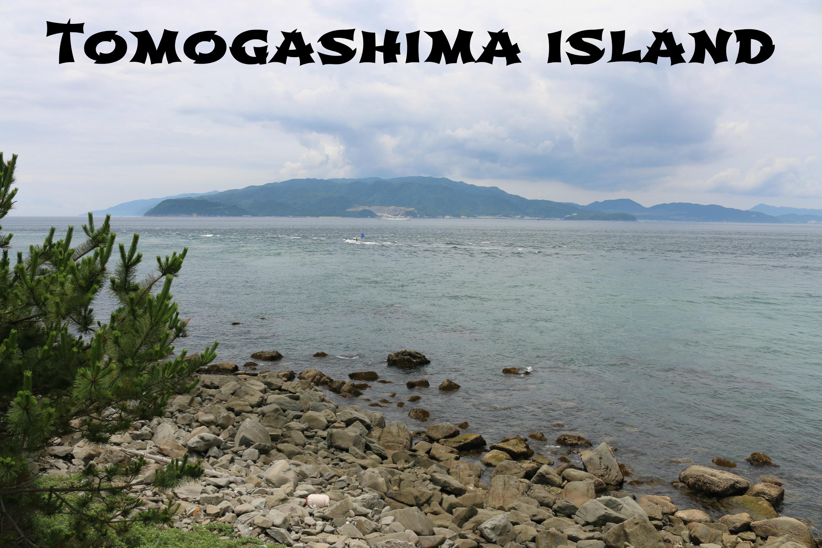 TomogashimaIsland