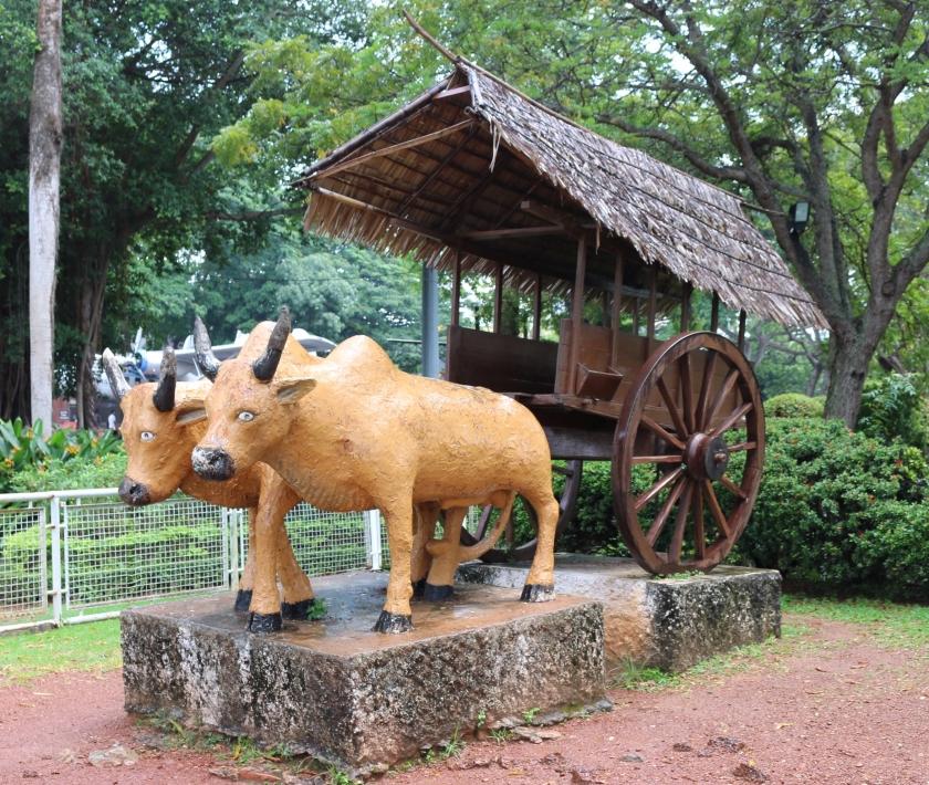 Bullock-cart-Melaka