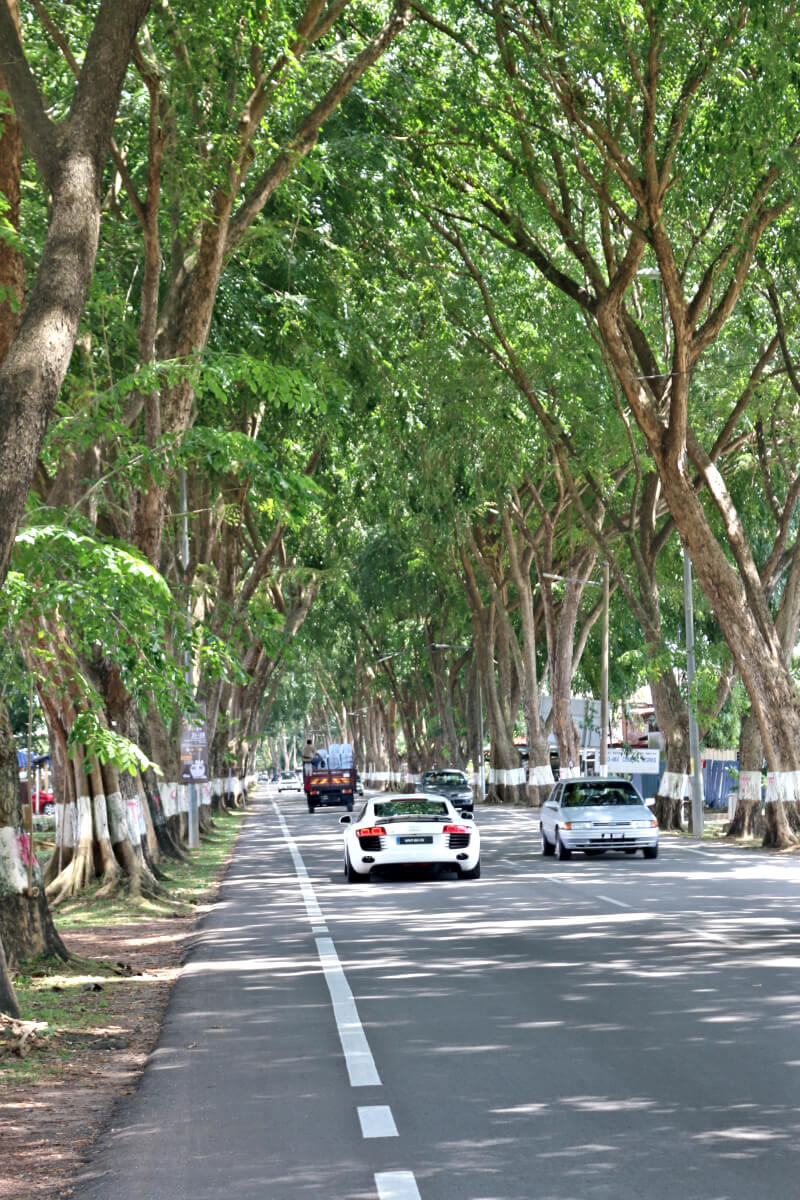 Melaka-Tourism-kampung-duyong