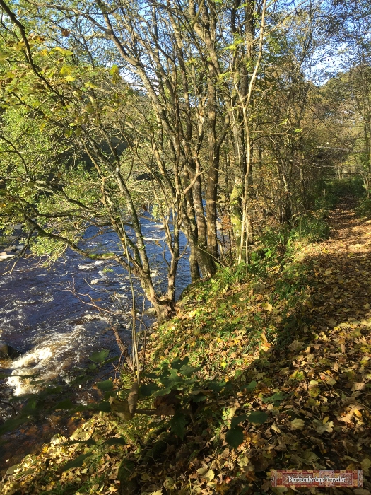 lambley-viaduct-to-featherstone-castle-river-tyne